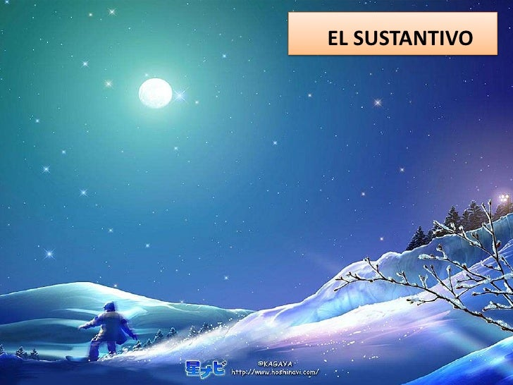 EL SUSTANTIVO<br />
