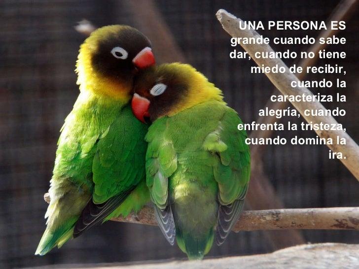 UNA PERSONA ES grande cuando sabe dar, cuando no tiene miedo de recibir, cuando la caracteriza la alegría, cuando enfrenta...