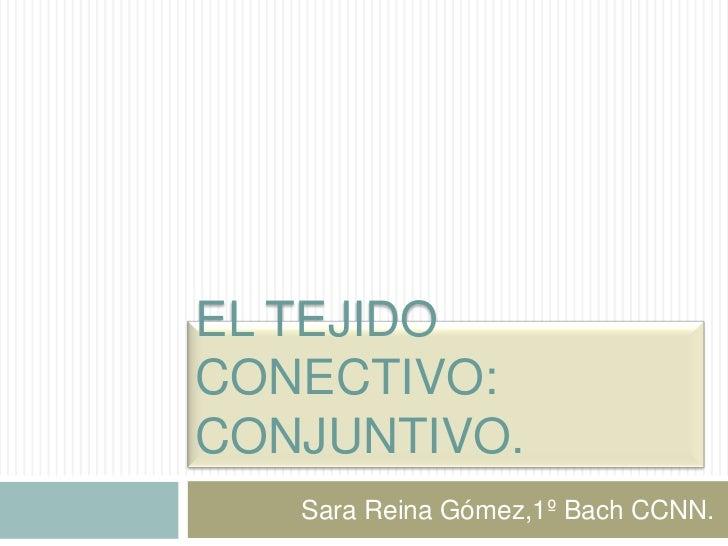EL TEJIDOCONECTIVO:CONJUNTIVO.   Sara Reina Gómez,1º Bach CCNN.