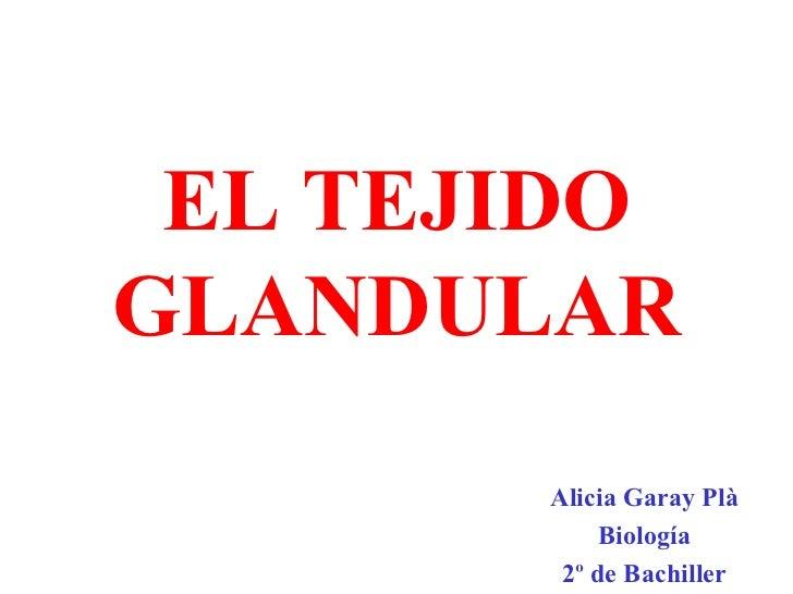 EL TEJIDO GLANDULAR Alicia Garay Plà Biología 2º de Bachiller