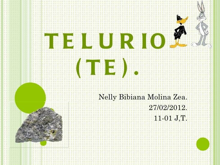 T E L U R IO   ( TE ) .     Nelly Bibiana Molina Zea.                   27/02/2012.                    11-01 J,T.