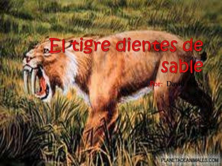 El tigre dientes de sable