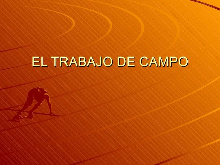 EL TRABAJO DE CAMPO