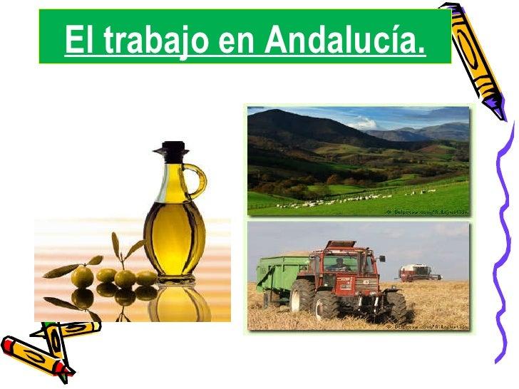 El trabajo en Andalucía.