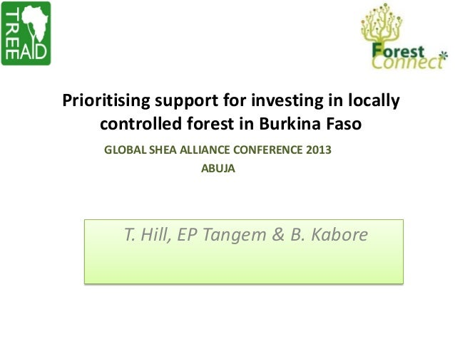 Prioritising support for investing in locally controlled forest in Burkina Faso