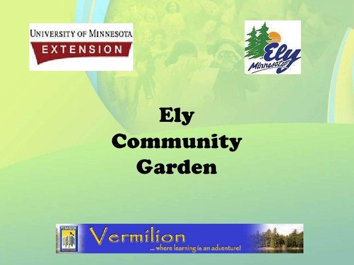 Ely Community   Garden