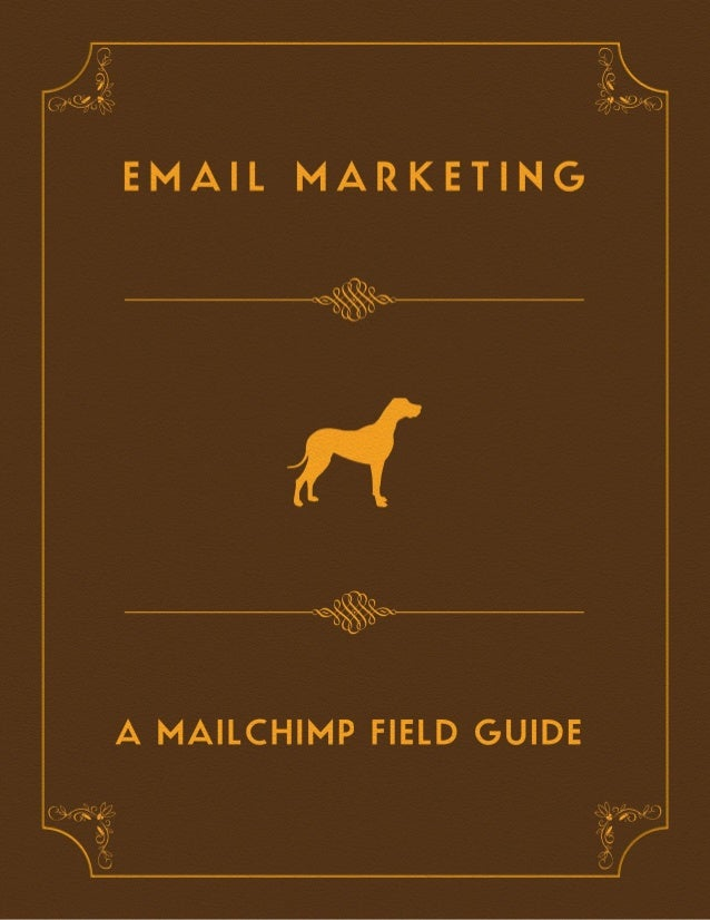 Email marketing-field-guide