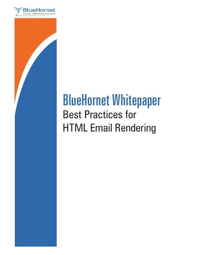BlueHornet Whitepaper                                              Best Practices for                                     ...