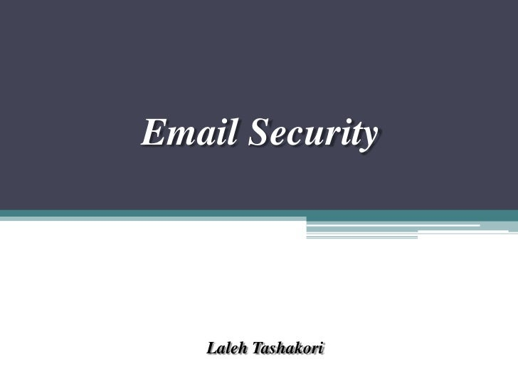 Email Security<br />LalehTashakori<br />