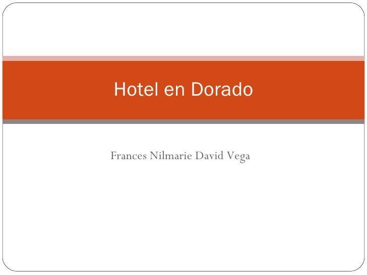 Frances Nilmarie David Vega Hotel en Dorado