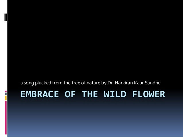 Embrace of the wild flower