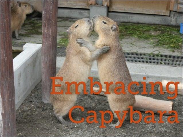 Embracing Capybara