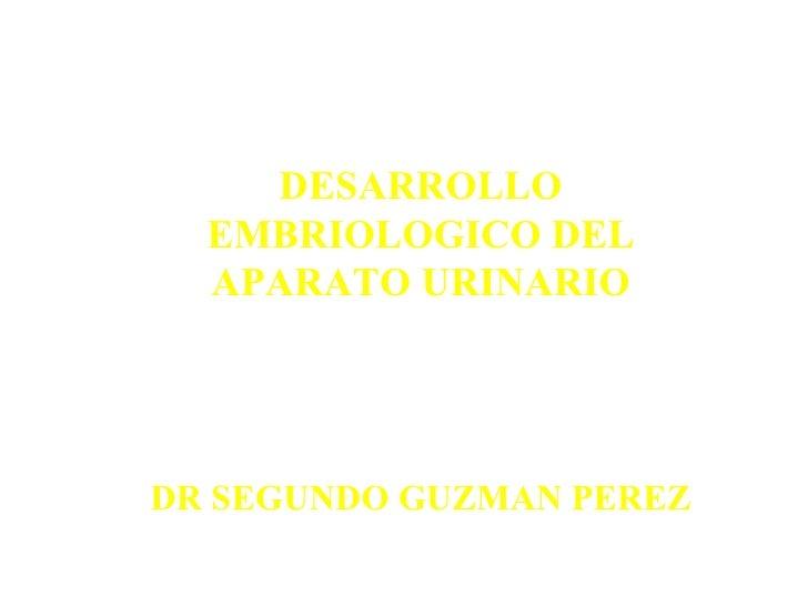 DESARROLLO EMBRIOLOGICO DEL APARATO URINARIO DR SEGUNDO GUZMAN PEREZ