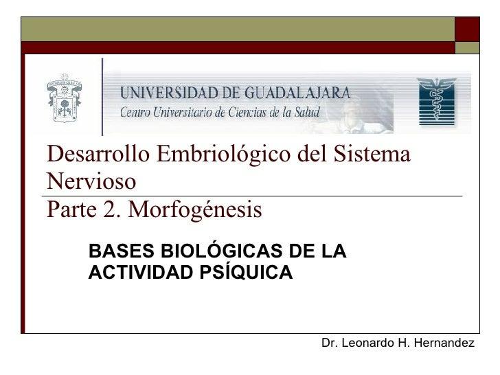 Desarrollo Embriológico del Sistema Nervioso Parte 2. Morfogénesis BASES BIOLÓGICAS DE LA ACTIVIDAD PSÍQUICA Dr. Leonardo ...