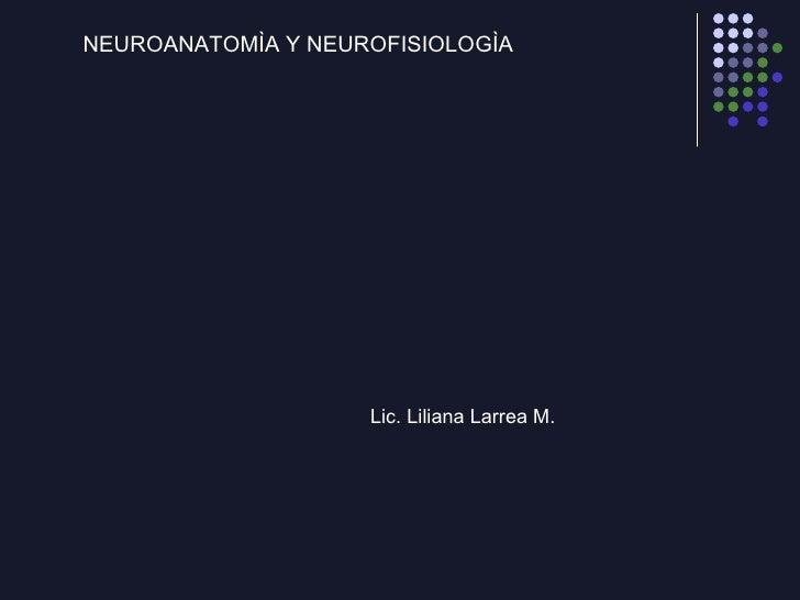 EMBRIOLOGÍA DEL SISTEMA NERVIOSO <ul><li>NEUROANATOMÌA Y NEUROFISIOLOGÌA </li></ul>Lic. Liliana Larrea M.