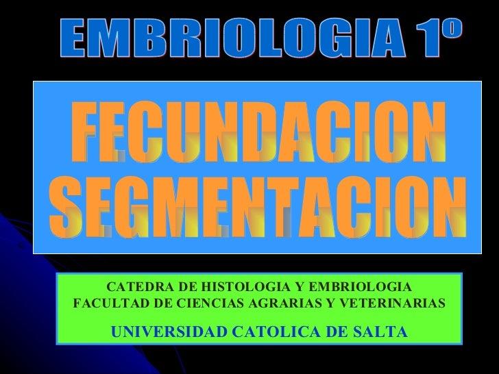EMBRIOLOGIA 1º FECUNDACION SEGMENTACION CATEDRA DE HISTOLOGIA Y EMBRIOLOGIA FACULTAD DE CIENCIAS AGRARIAS Y VETERINARIAS U...