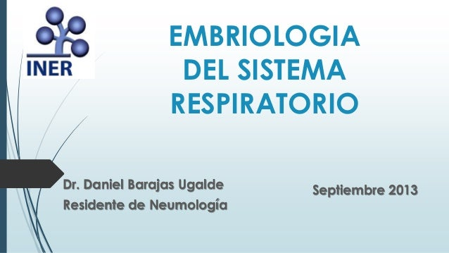 Embriologia sistema respiratorio