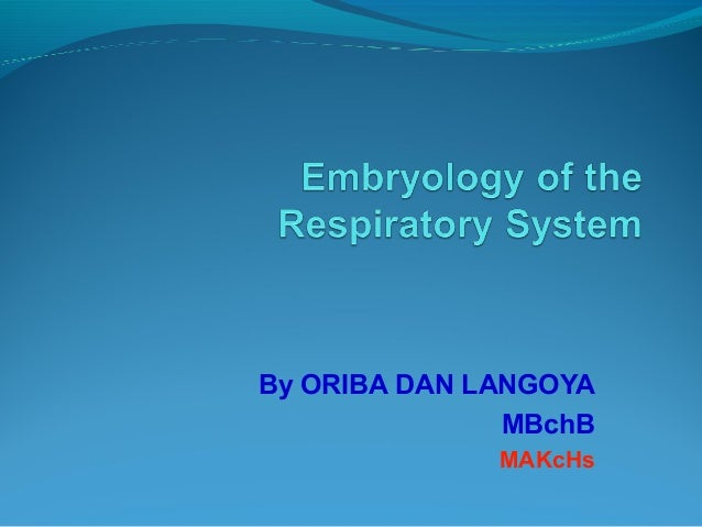 Embrology of the respiratory system