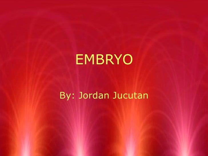 EMBRYO By: Jordan Jucutan