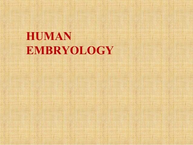 Embryology2