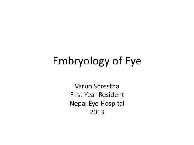 Embryology of Eye Varun Shrestha First Year Resident Nepal Eye Hospital 2013