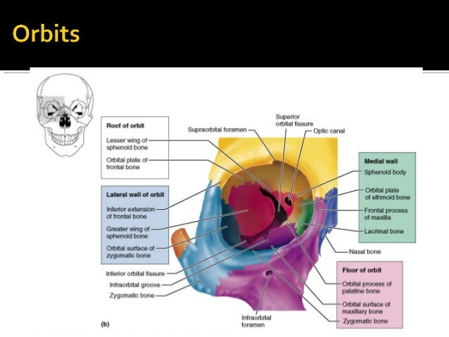 corneal abrasion steroid eye drops