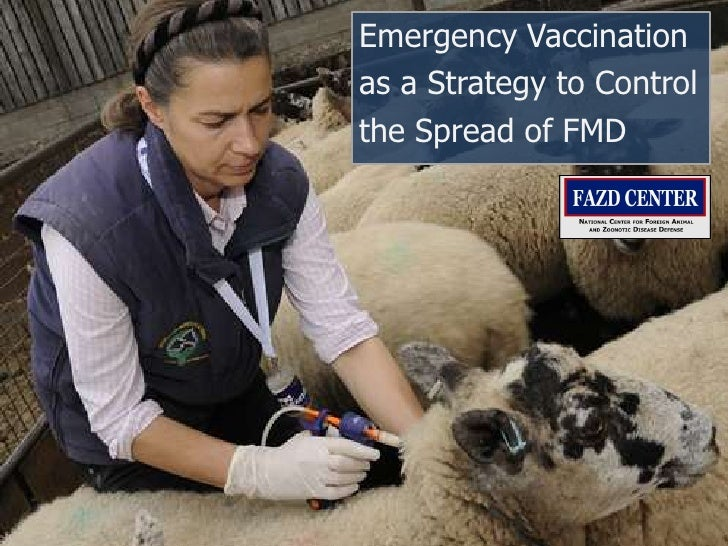 Emergency Vaccinationas a Strategy to Controlthe Spread of FMD<br />