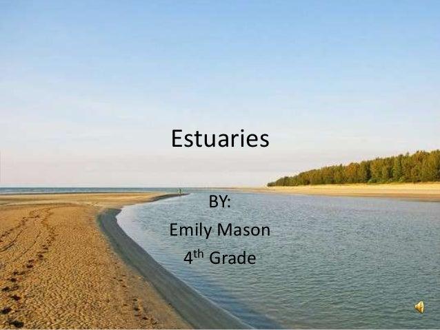 Estuaries     BY:Emily Mason 4th Grade