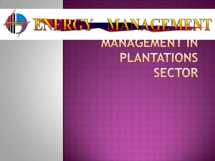 Energy Management in Plantations Sector<br />