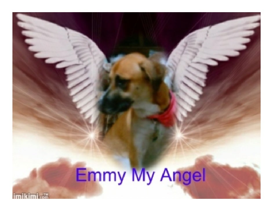 Emmy Our Angel