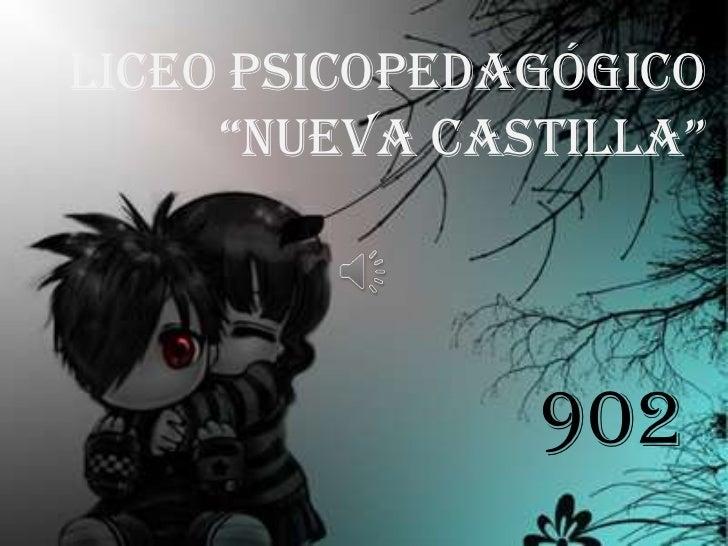 """Liceo Psicopedagógico     """"Nueva Castilla""""               902"""