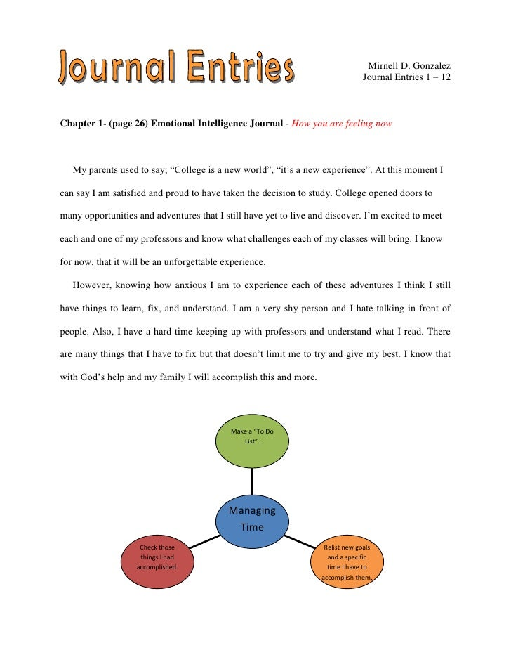 journal entries essay