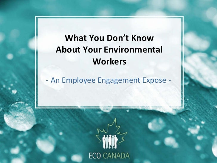 What You Don't Know About Your Environmental Workers - An Employee Engagement Expose -