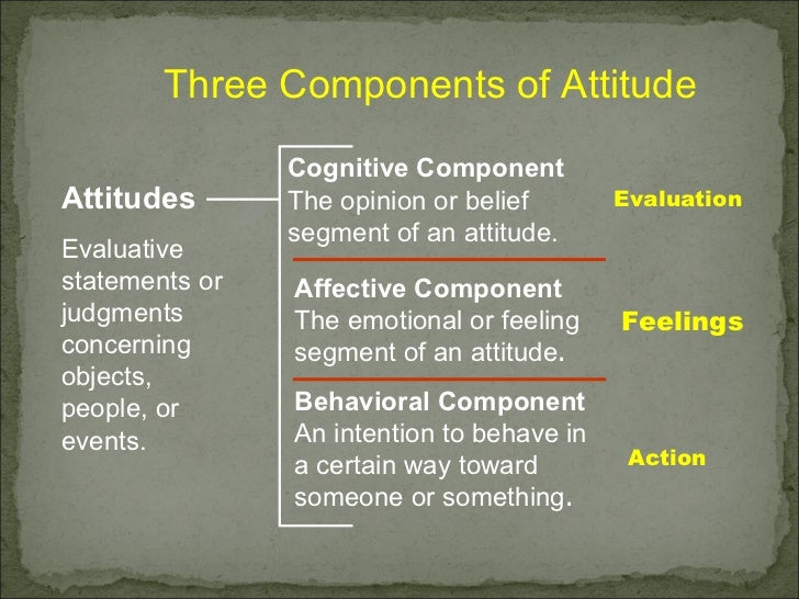 effects of a bad attitude in Good work + bad attitude = bad news does management have to spend time correcting for the effect of this employee's attitude on the productivity of other.