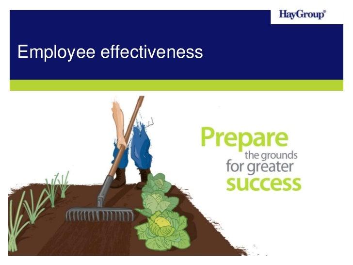 Employee Effectiveness Overview