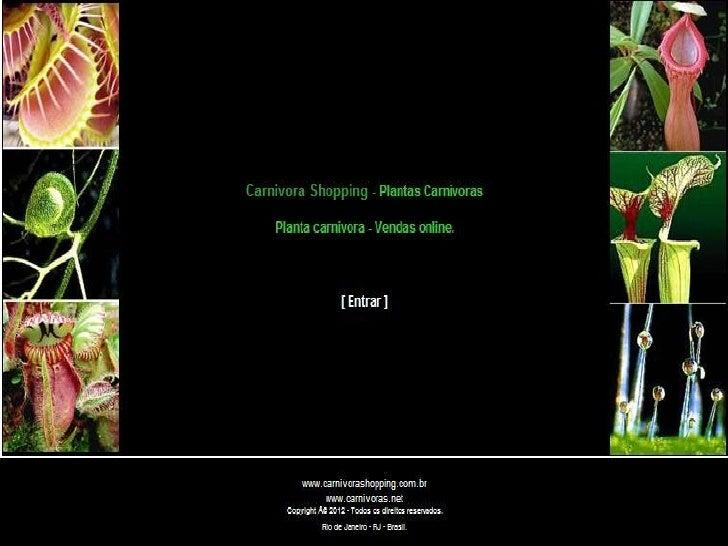 Empresa plantas carnivoras