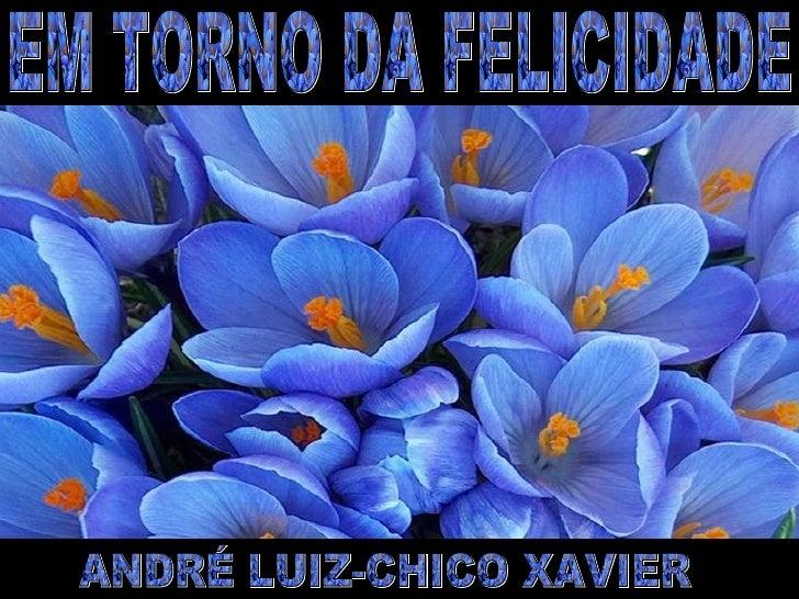 EM TORNO DA FELICIDADE ANDRÉ LUIZ-CHICO XAVIER