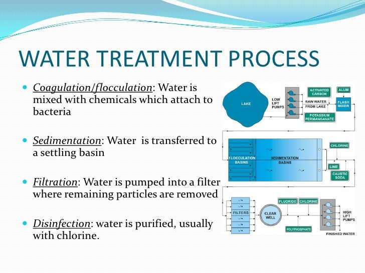 essay on water purification Essay on plants water treatment design research paper format apa pdf essay about service newspaper in kannada school subject essay watchman in hindi fce essay part 1 mockingbird about france essay facebook effect.