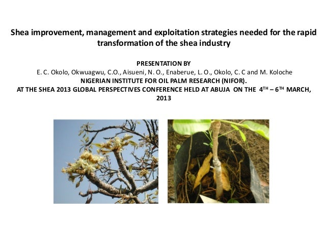 Shea improvement, management and exploitation strategies needed for the rapid                    transformation of the she...