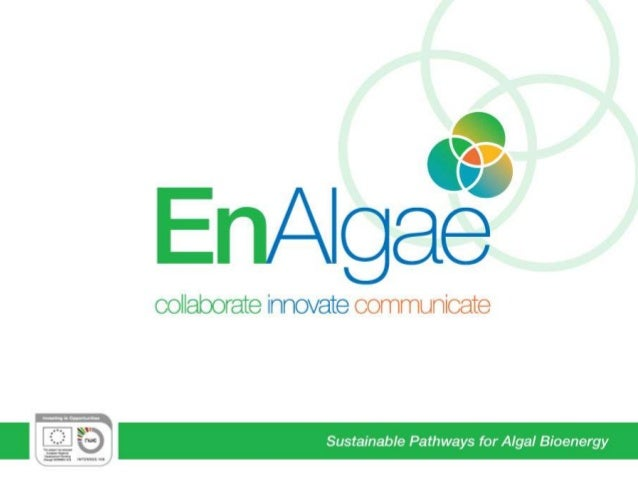 Sustainable Pathways for Algal Bioenergy
