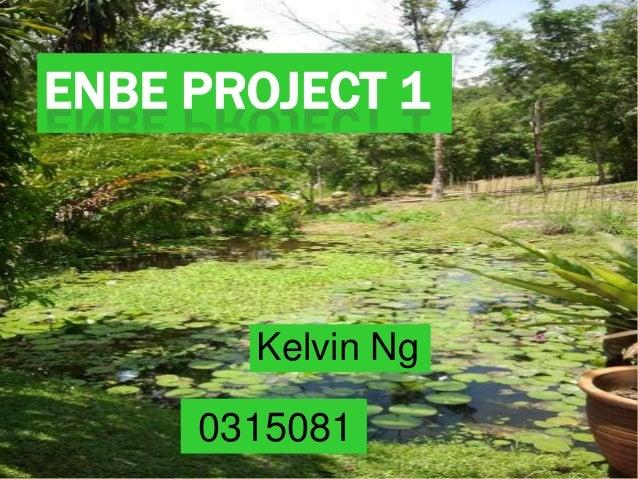 ENBE PROJECT 1Kelvin Ng0315081