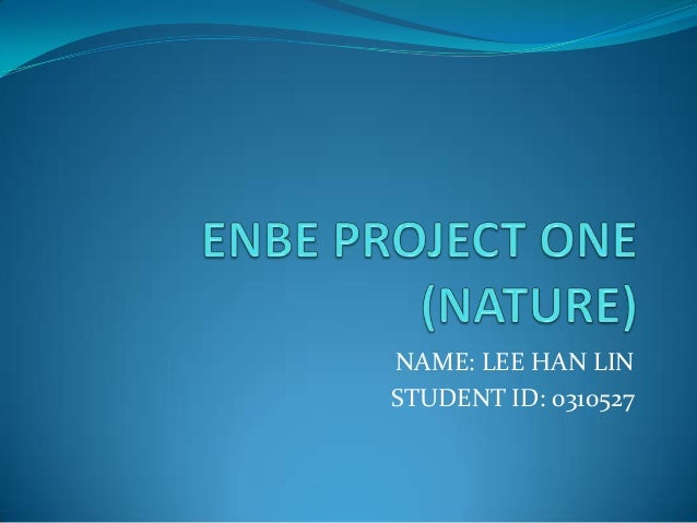 ENBE PROJECT ONE