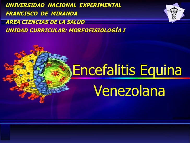 UNIVERSIDAD  NACIONAL  EXPERIMENTAL FRANCISCO  DE  MIRANDA AREA CIENCIAS DE LA SALUD UNIDAD CURRICULAR: MORFOFISIOLOGÍA I ...