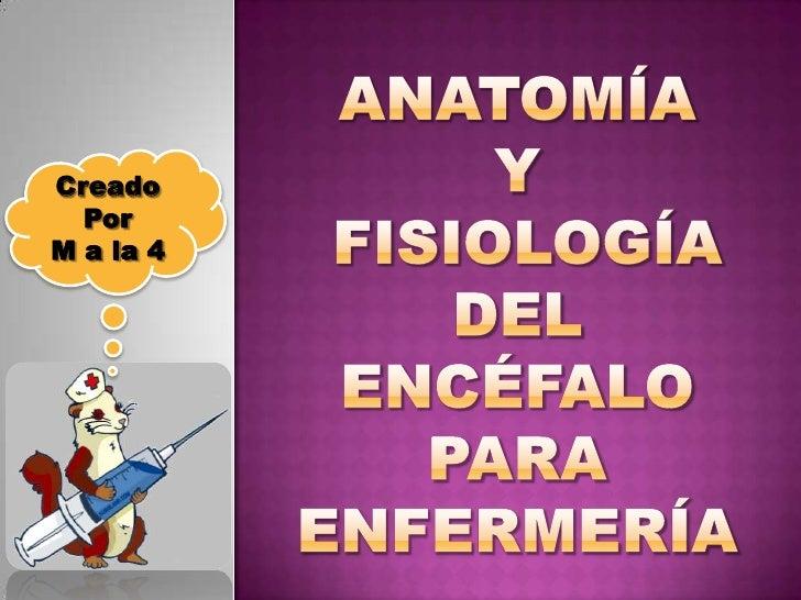 Anatomía y fisiologíadel encéfalopara enfermería<br />Creado <br />Por <br />M a la 4<br />