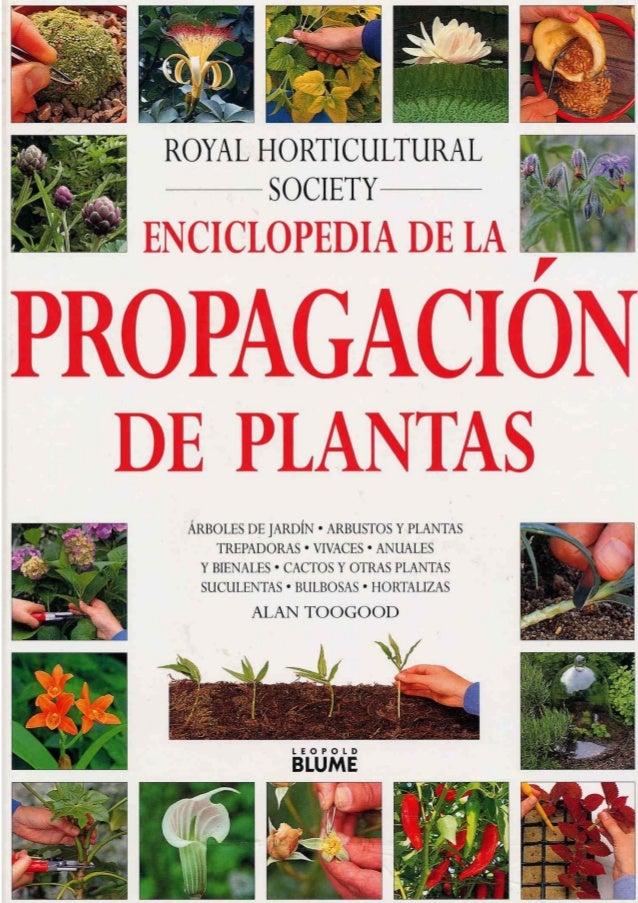 propagaci n de plantas