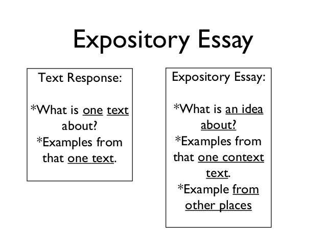 Expository essay outline 7th grade