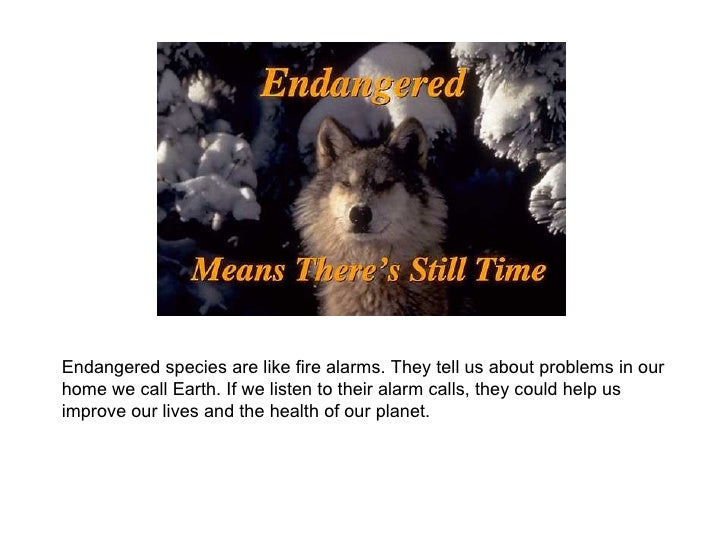 Endangered species are like fire alarms. They tell us about problems in our home we call Earth. If we listen to their alar...
