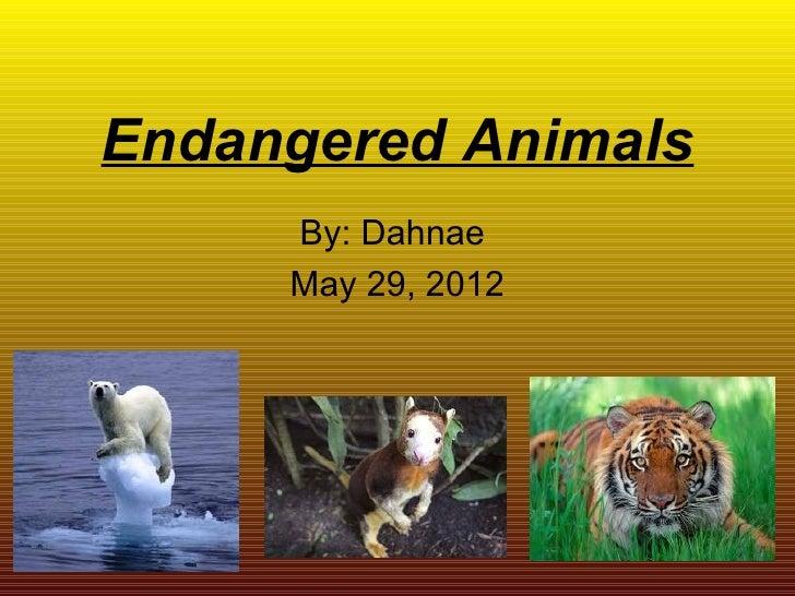 Endangered animals Dahnae