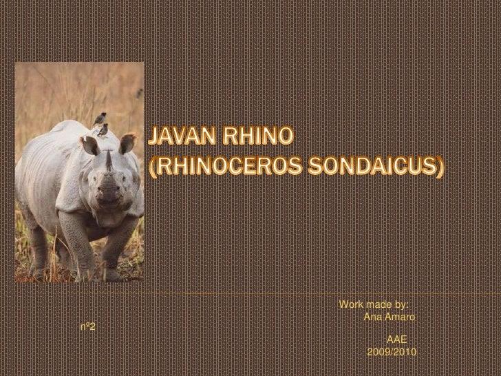 Javanrhino                 (Rhinocerossondaicus)<br />Workmadeby:<br />                                                   ...