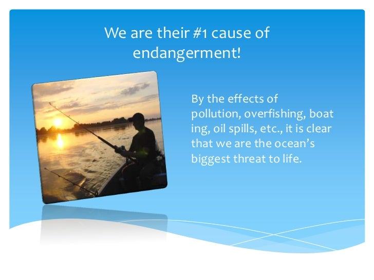 "endangered marine life essay Short essay on ""aquatic life""  aquatic life is one part of many life cycles that exist to maintain equilibrium of entire life cycle."